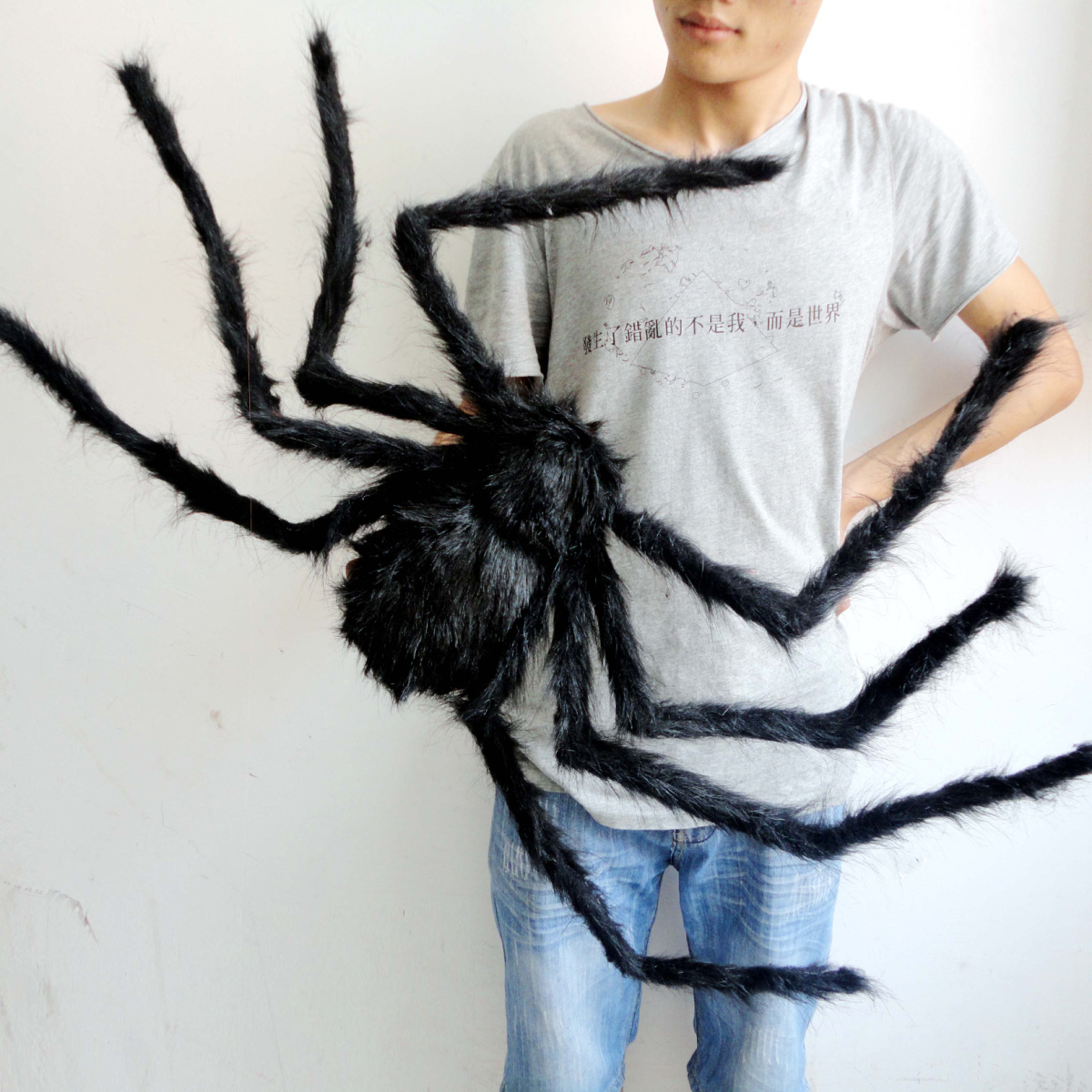grosse-araignee