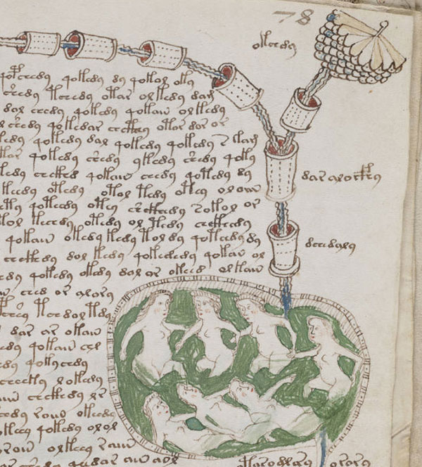 page-manuscrit-voynich