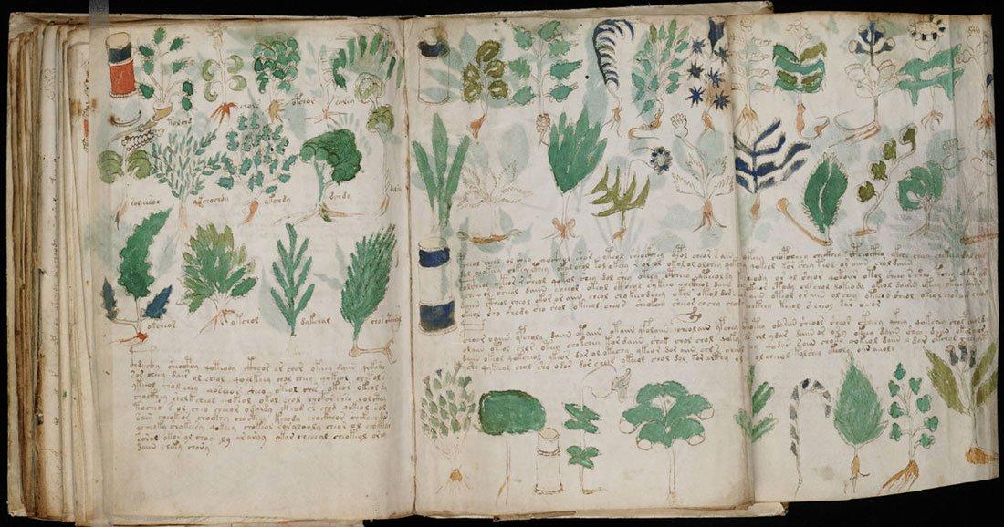 une-manuscrit-publication