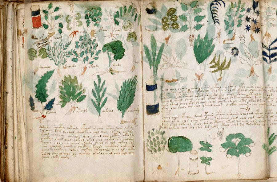 une1-manuscrit