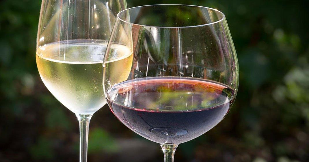 vin-rechauffement-climatique-une