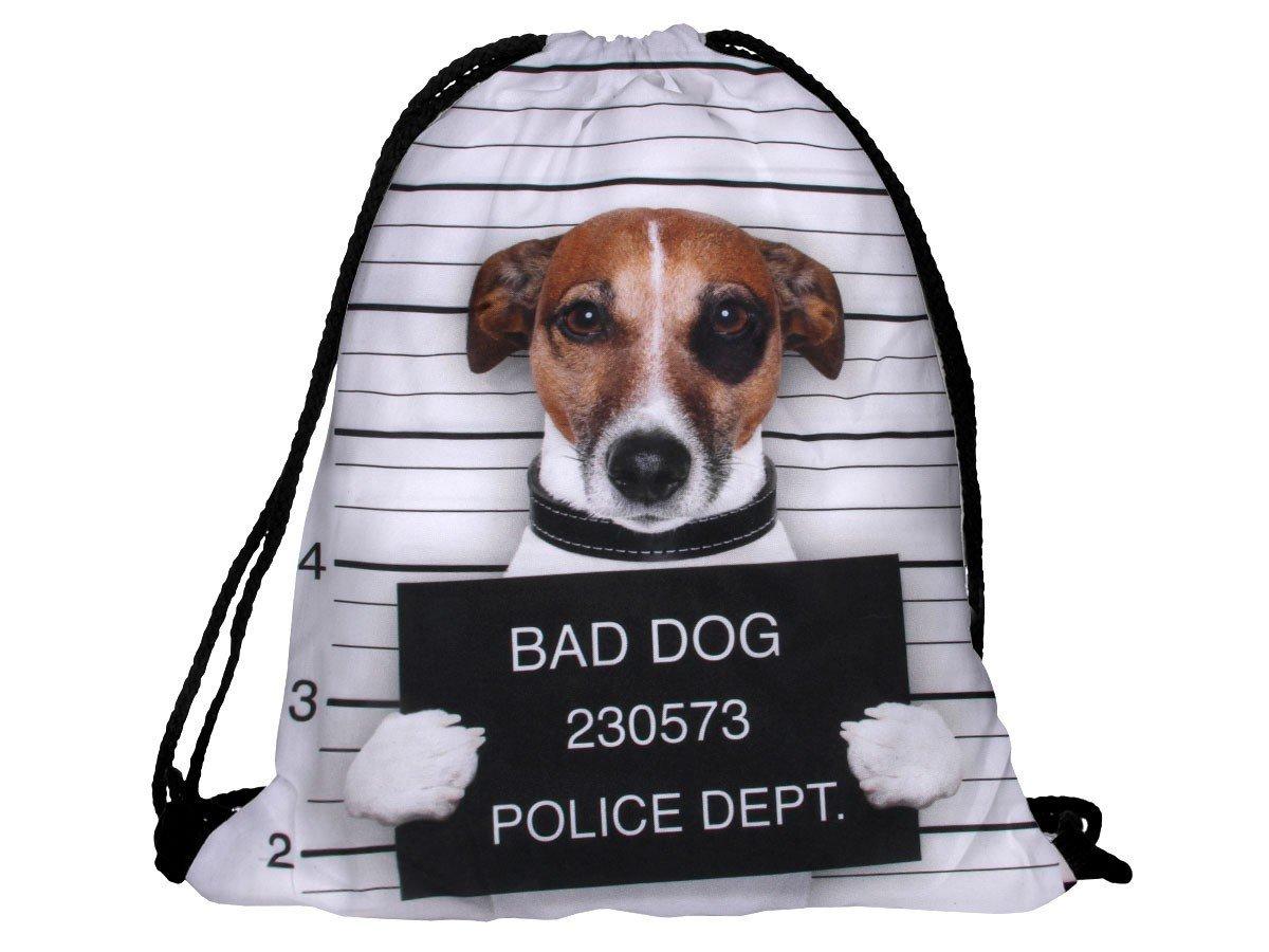 13.bad-dog
