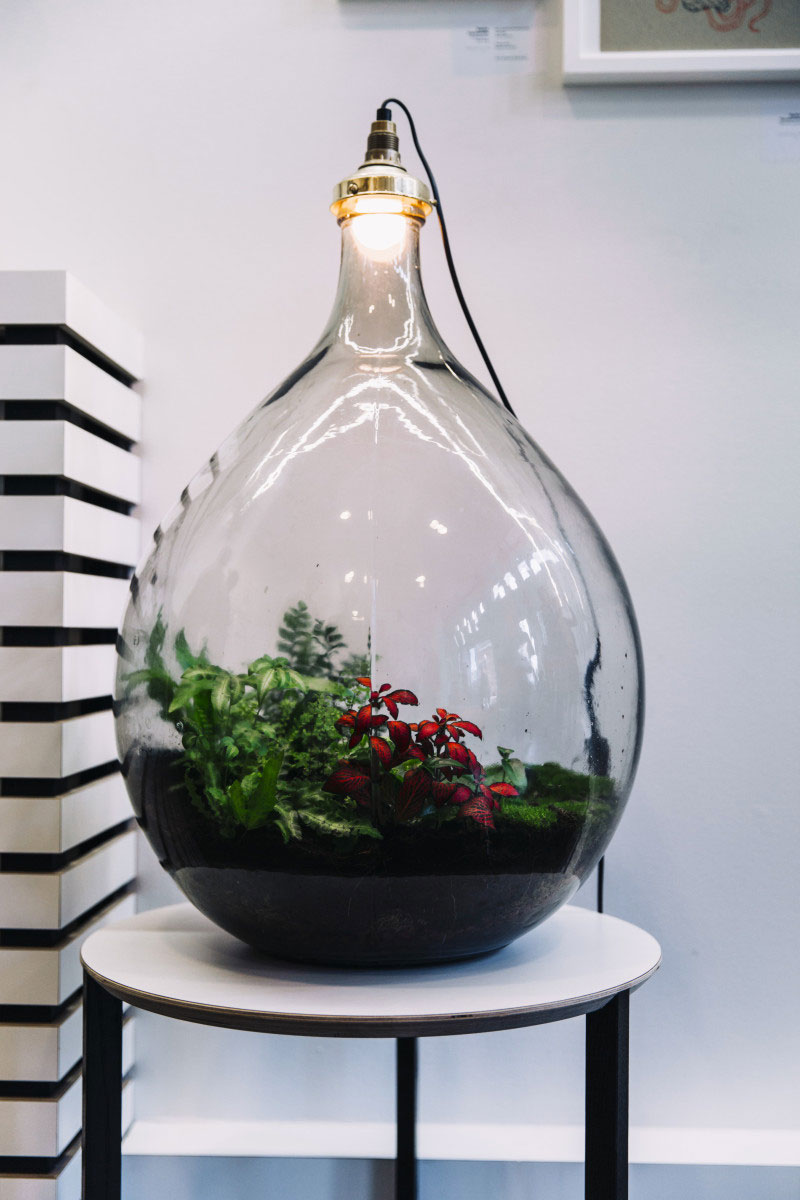 lampe-ecosysteme-5
