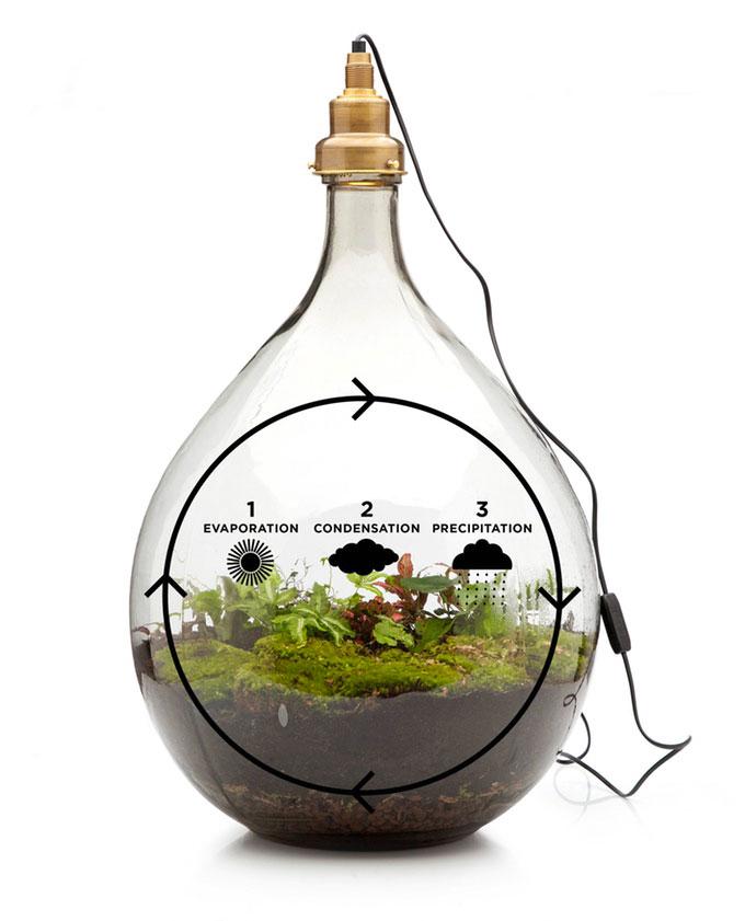 lampe-ecosysteme-6