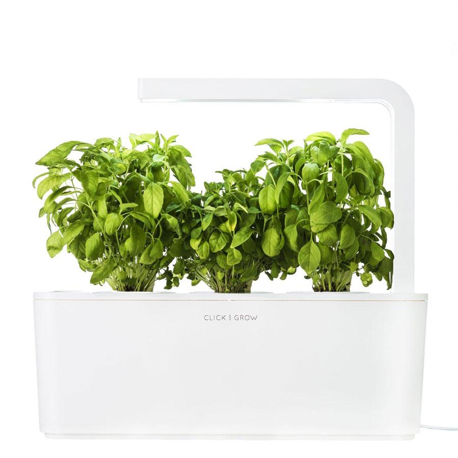 plant-herb-garden-vue