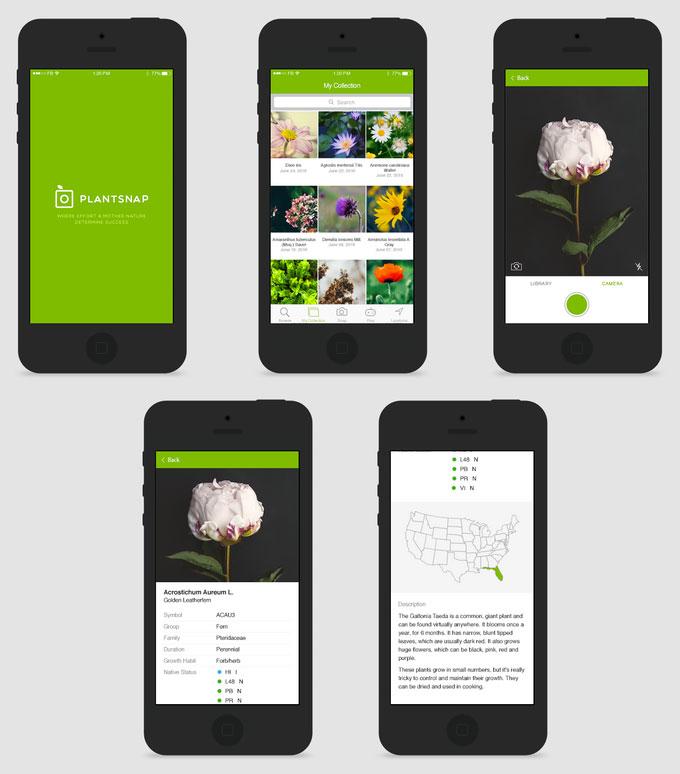 plantsnap-2