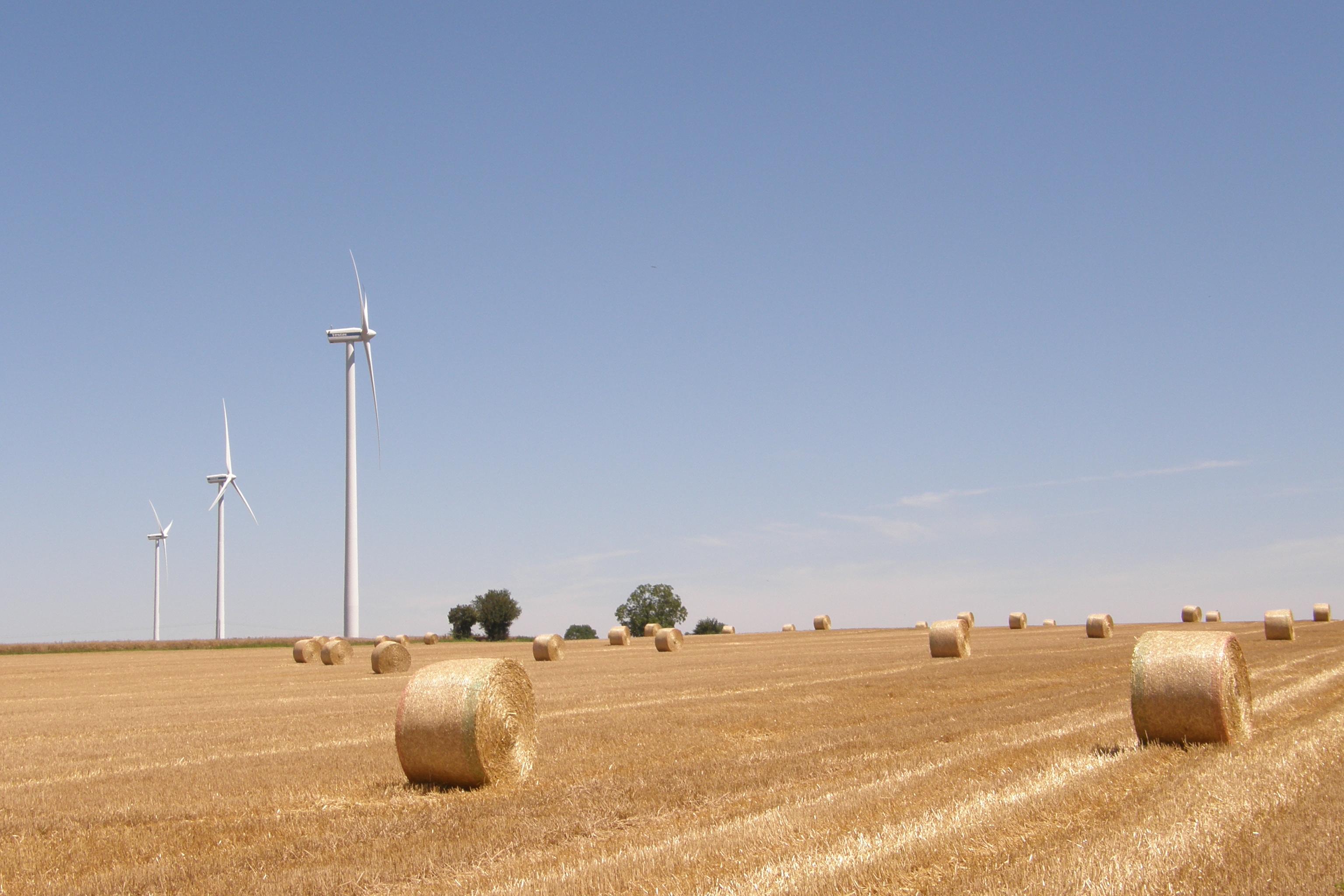 © Wikipédia - Champs d'éoliennes en France
