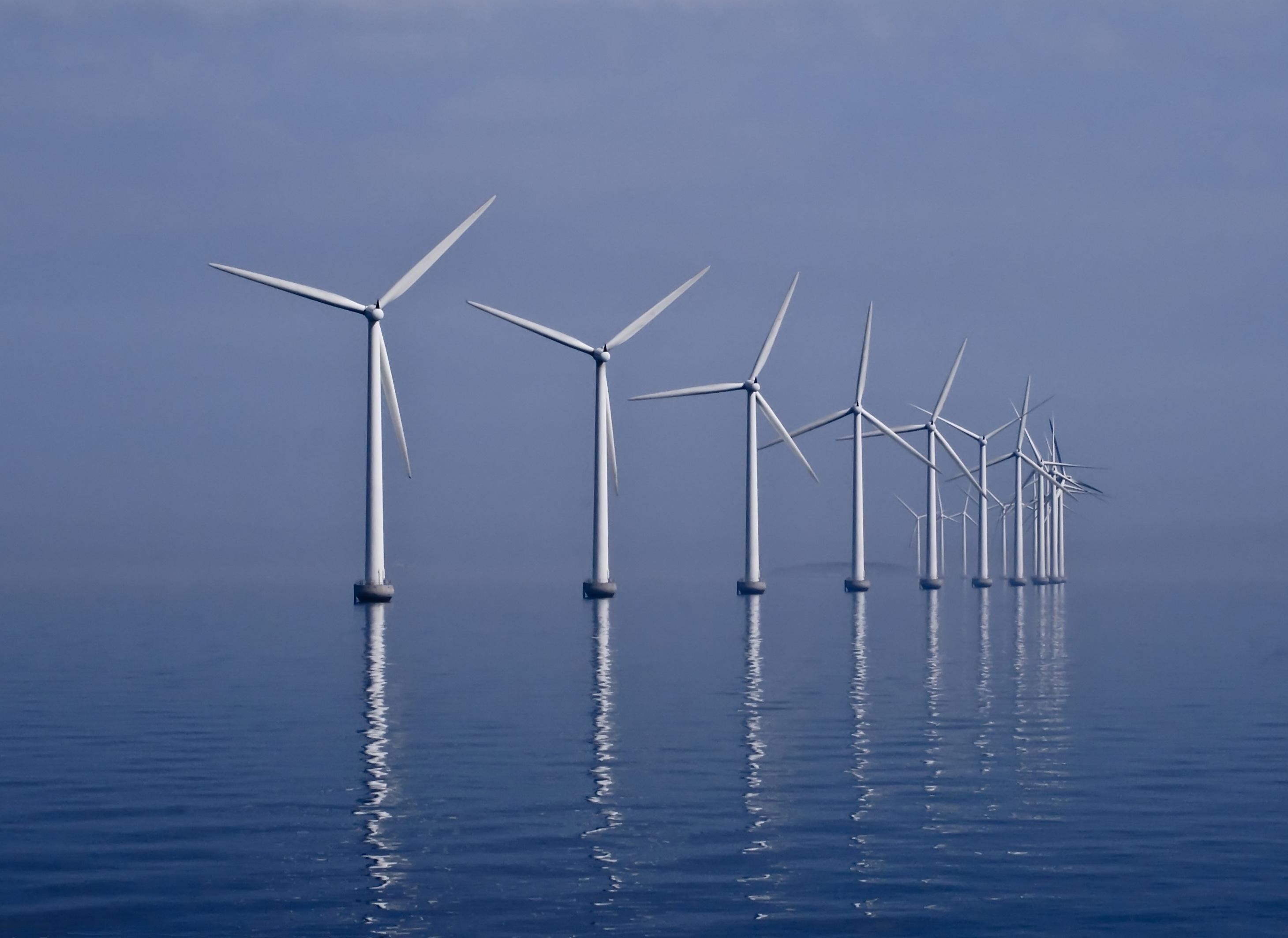 © Wikimédia - Champs d'éoliennes off-shore du Danemark