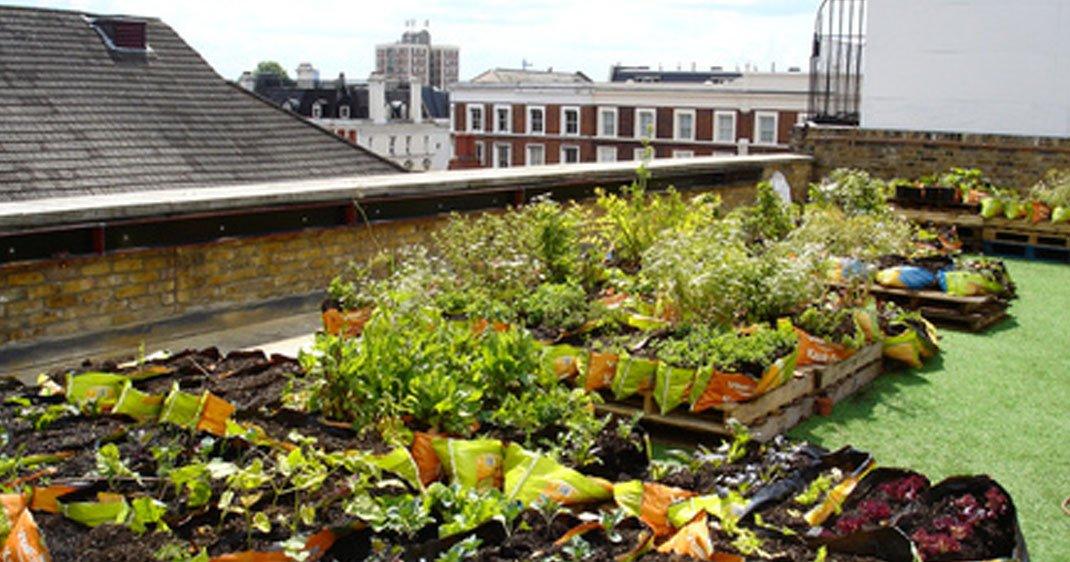 jardins-toits-paris-une
