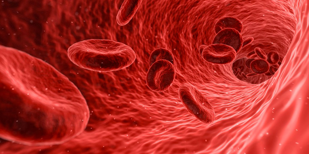 sang-cellules