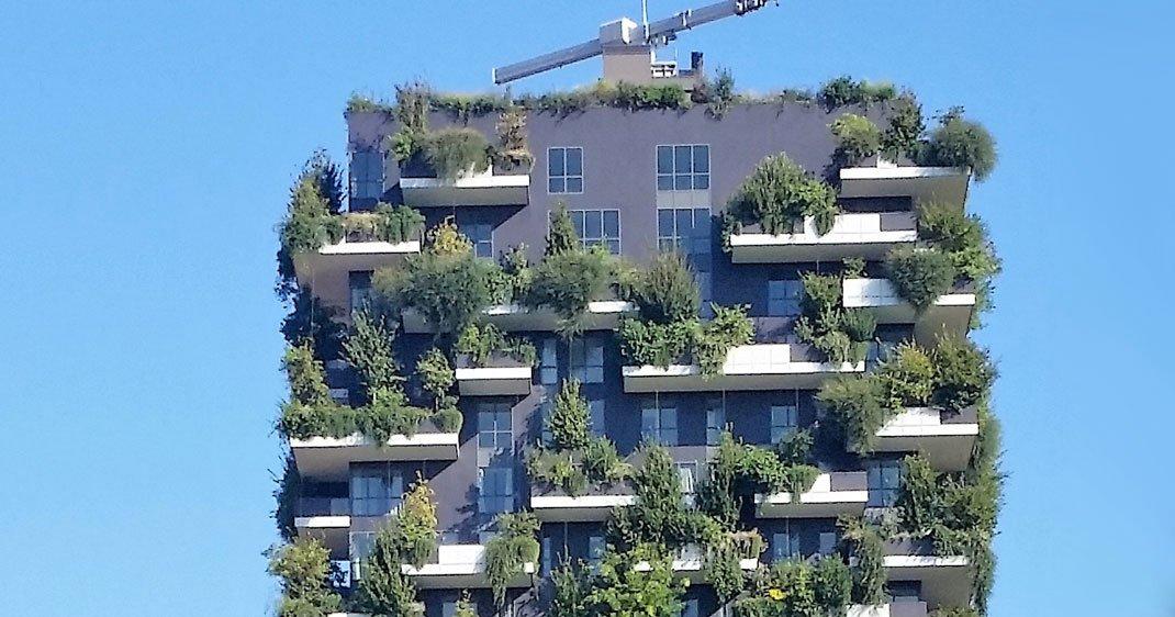 Pour ramener la biodiversit en ville des immeubles for Piscine entre 2 immeubles