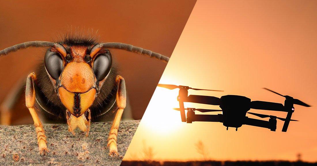 Acheter drone x pro – selfie quadcopter ar drone 1.0