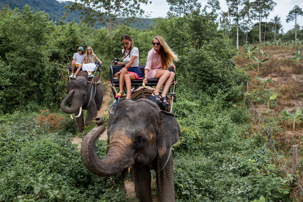 elephant-tourisme