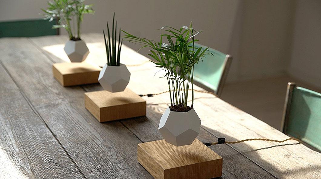Ce pot de fleurs en l vitation d fie les lois de la for Plante en levitation