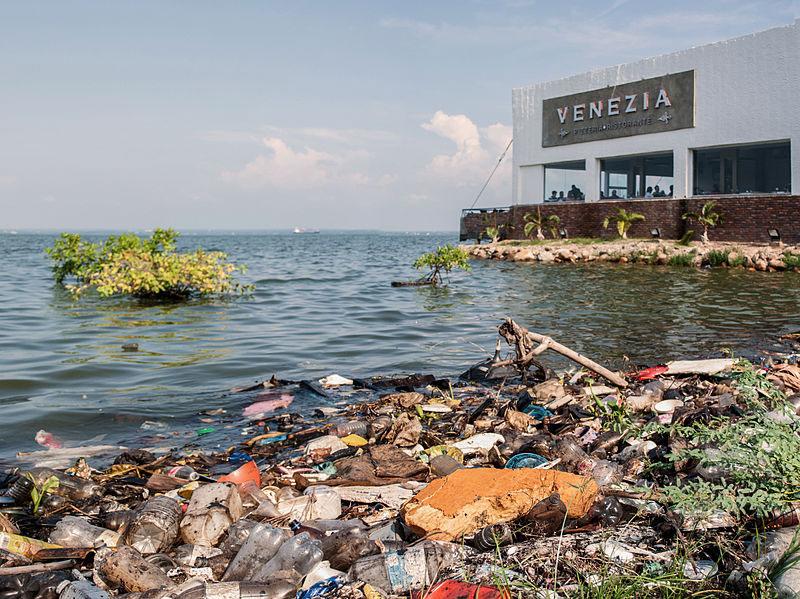 1 Personne Sur 10 Meurt 224 Cause De La Pollution Dans Le Monde