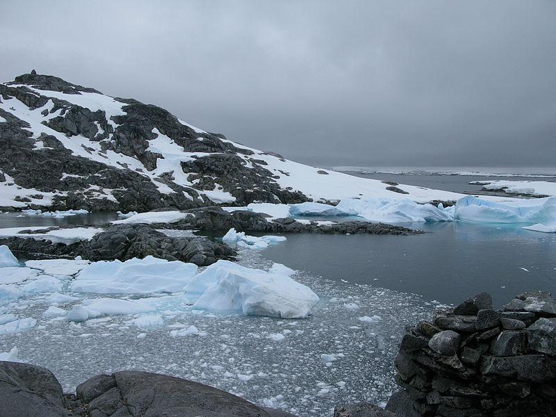5 informations méconnues mais fascinantes à propos des dinosaures ! Par Thomas Le Moing                           Antarctique
