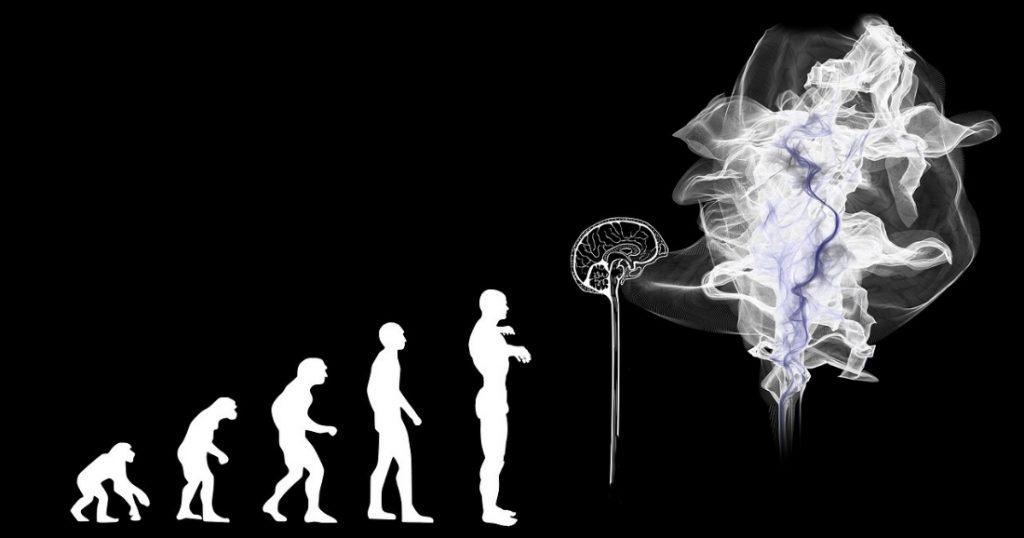 l'évolution de l'Homme, chaînon manquant pour les IA