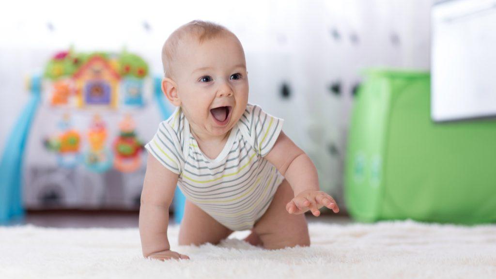 Inhibition comportementale bébé