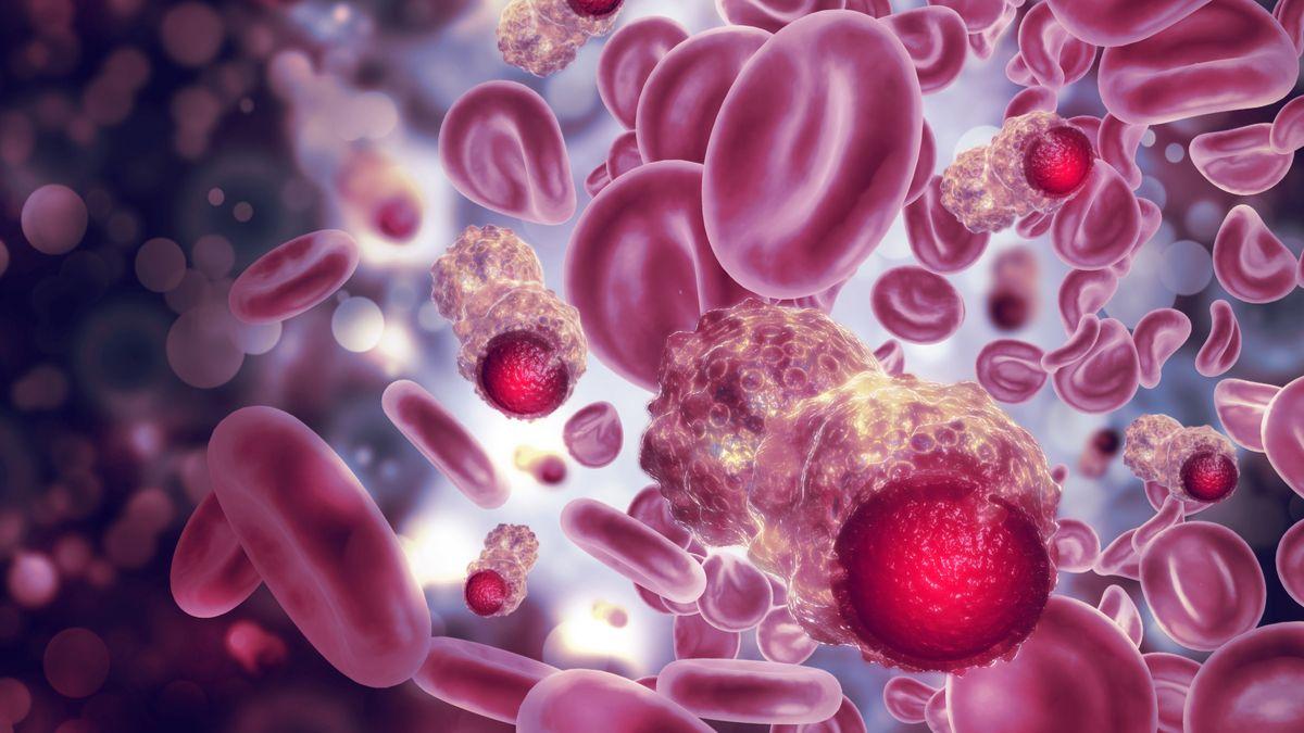 Cette protéine protectrice empêche les cellules cancéreuses de se propager dans le sang