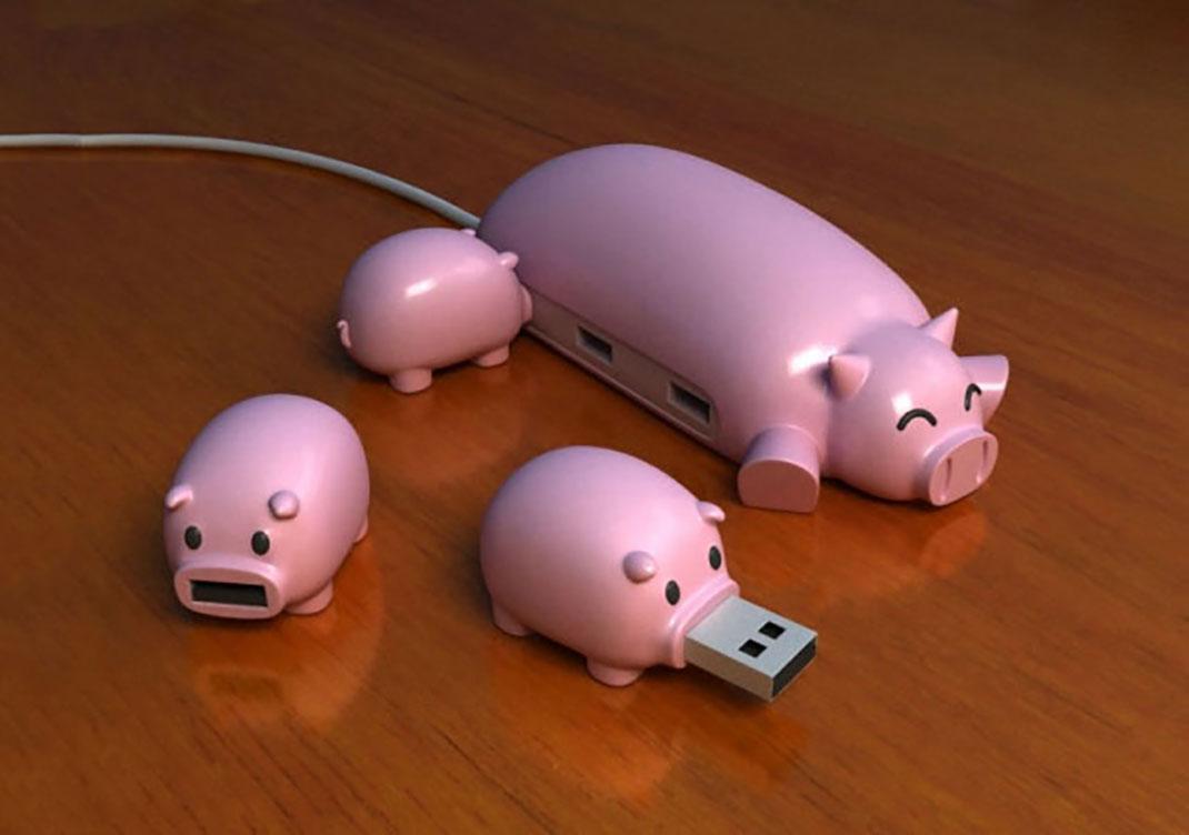 usb-pig