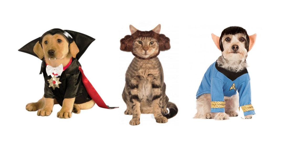 costumes-animaux-une