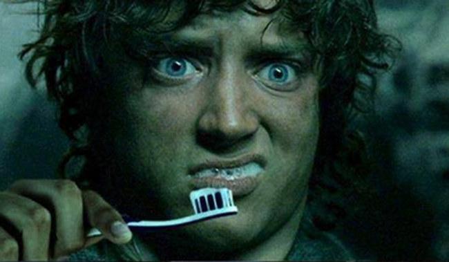 Frodon-Brosse-à-dents