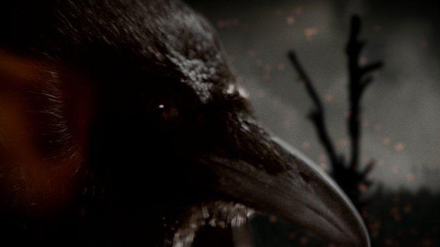 vikings-corbeaux-mort