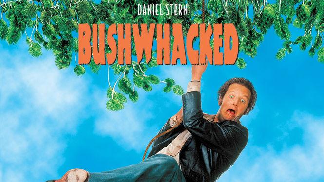 Daniel-Stern-Bushwhacked