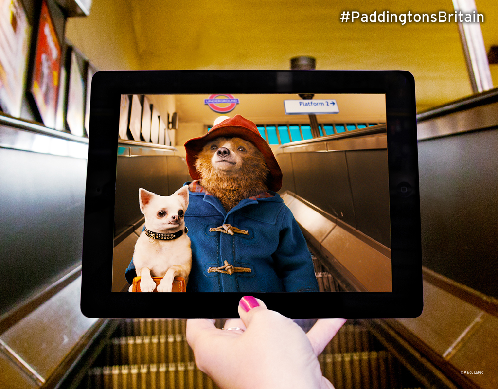Paddington-ourson