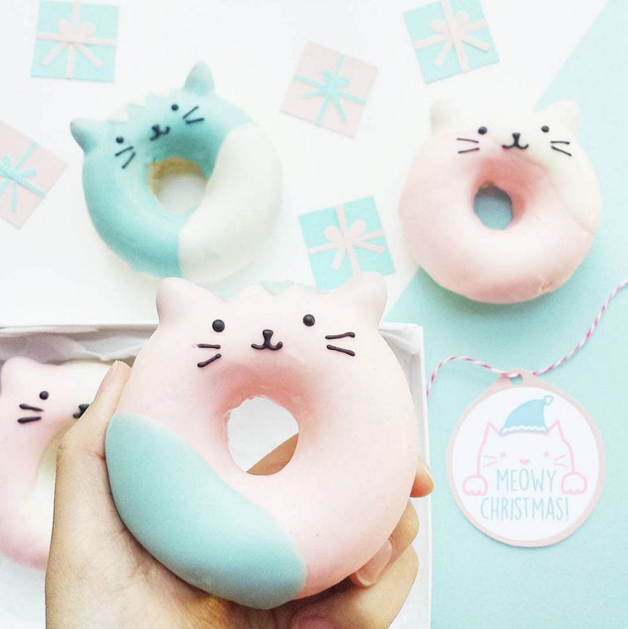 donuts-chats-arc-en-ciel