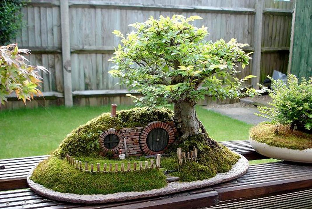 ls-bonsai-hobbit