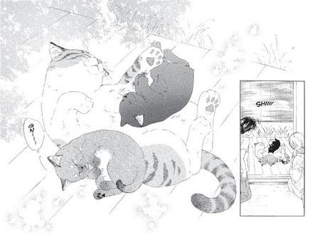 mangas-chats-groupe
