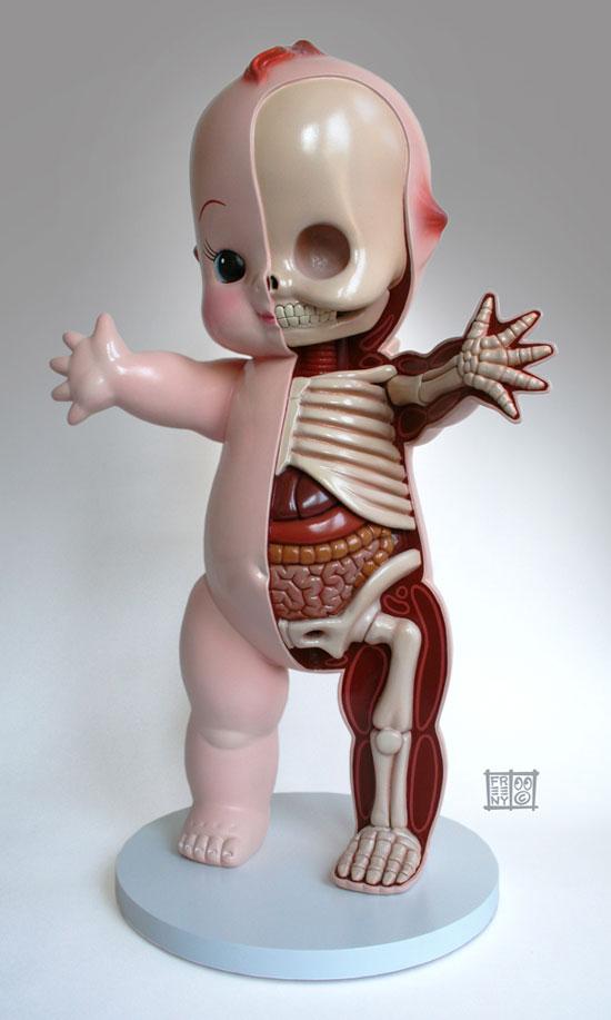 anatomie-kewpie