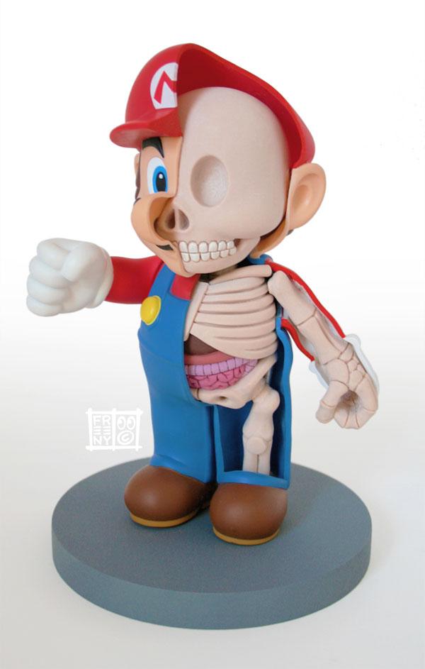 anatomie-mario