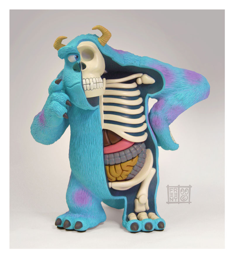 anatomie-sully