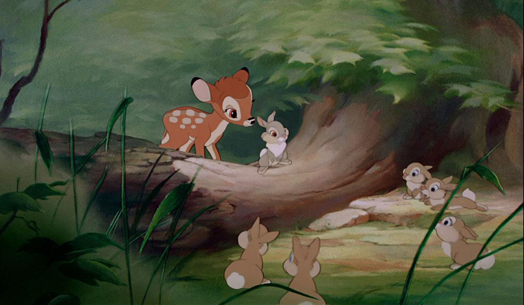 cs-cine40-bambi
