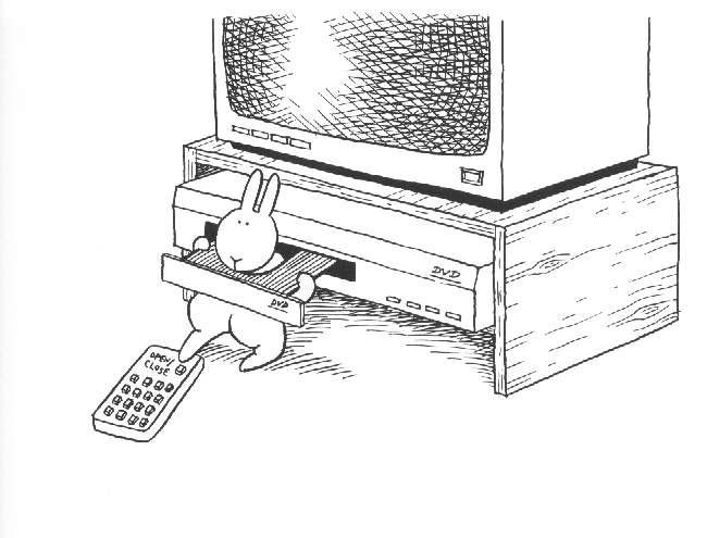 bunny-suicides-dvd