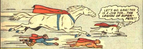 ligue-super-animaux